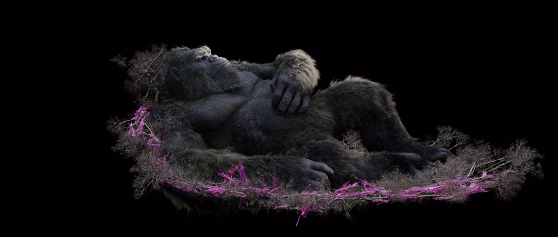 Godzilla vs Kong - visual effects by Weta Digital